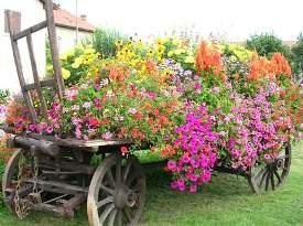 photo-charrette-fleurie